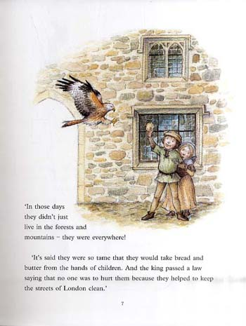 Granny Sarah and the Last Red Kite (Paperback)