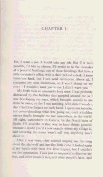 The Curriculum Vitae Of Aurora Ortiz (Paperback)