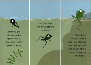 Oscar & The Frog: A Book About Growing (Hardback)