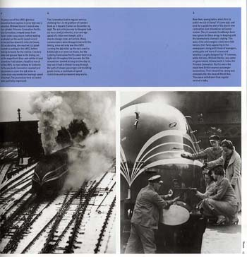The Train: An Illustrated History (Paperback)