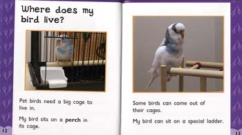 Birds - Read and Learn: Pets in My House (Paperback)
