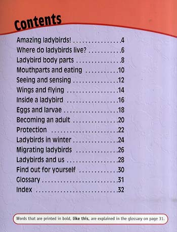 Ladybirds Up Close - Raintree Perspectives: Minibeasts Up Close (Paperback)