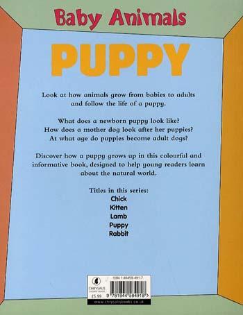 Baby Animals Puppy (Paperback)