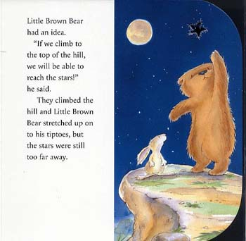 Image result for little bear's special wish