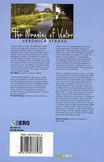 The Meaning of Water (Paperback)