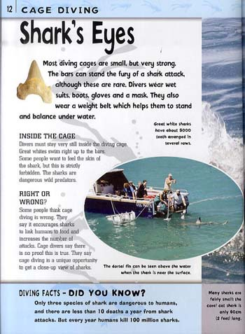 Inside Story: Diving - Inside Story 6 (Paperback)