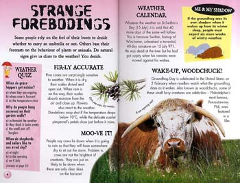 Clever Clogs: Weird Weather - Clever Clogs S. No. 4 (Paperback)