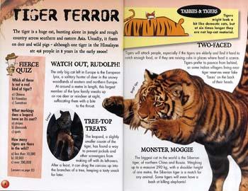 Clever Clogs: Fierce Predators - Clever Clogs S. No. 11 (Paperback)