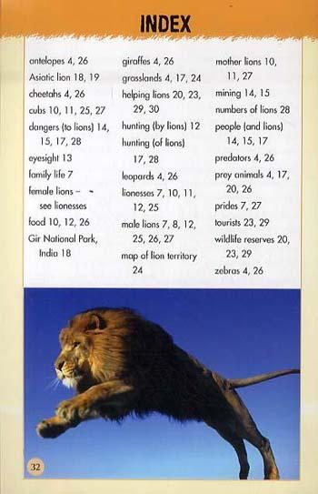 Animals in Danger: Lions - Animals in Danger No. 2 (Paperback)