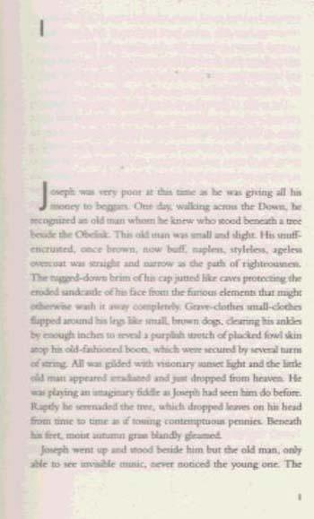 Several Perceptions - Virago Modern Classics (Paperback)