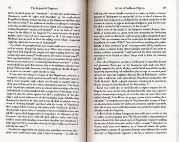 Legend of Napoleon (Paperback)