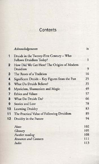 What Do Druids Believe? - What Do We Believe (Paperback)