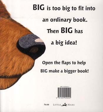 Big (Paperback)