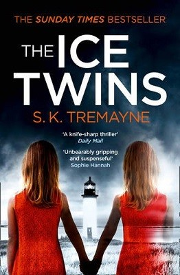The Ice Twins (Paperback)
