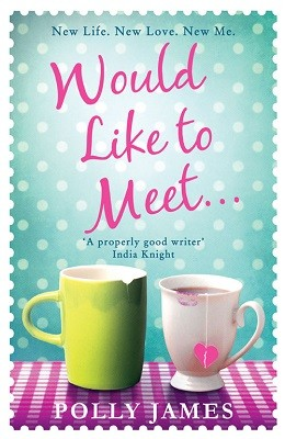 Would Like to Meet (Paperback)