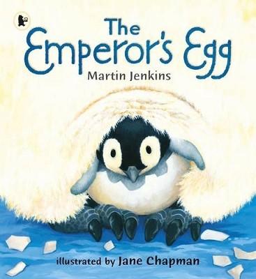 The Emperor's Egg (Paperback)