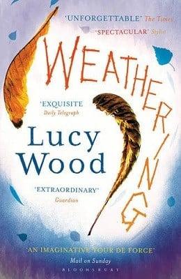 Weathering (Paperback)