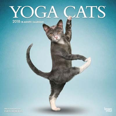 Yoga Cats 2018 Wall Calendar (Calendar)
