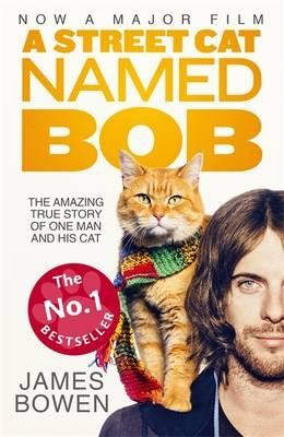 watch a street cat named bob online free