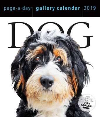 2019 Dog Gallery Page-A-Day Gallery Calendar (Calendar)