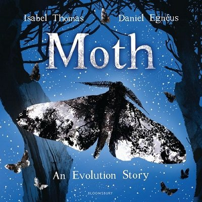 Moth by Isabel Thomas, Daniel Egneus   Waterstones