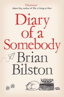 Diary of a Somebody (Paperback)