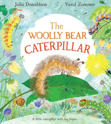 The Woolly Bear Caterpillar (Hardback)
