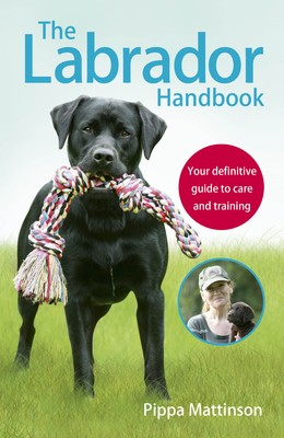 The Labrador Handbook: The definitive guide to training and caring for your Labrador (Paperback)