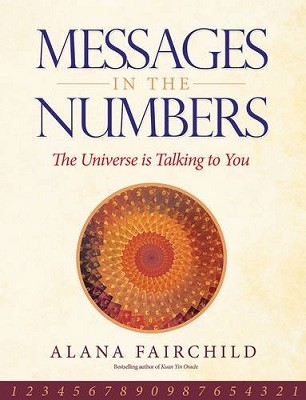 Messages in the Numbers: The Universe is Talking to You (Paperback)