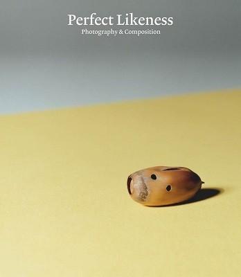 Perfect Likeness (Hardback)