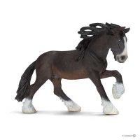 Shire Stallion