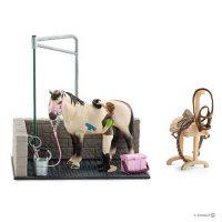Horse Wash Area