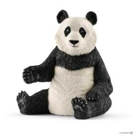 Giant Panda, Female