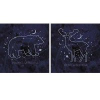 Celestial Deer And Bear Wallet X10