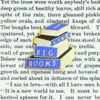I Like Big Books Pin Badge