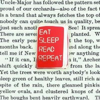 Eat Sleep Read Repeat Pin Badge