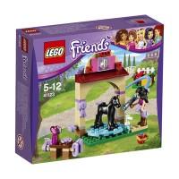 LEGO (R) Friends Foal's Washing Station
