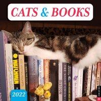2022 Cats & Books Wall Calendar