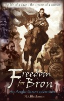 Freedom for Bron: The Boy Who Saved a Kingdom - History Adventures (Paperback)