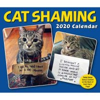 Cat Shaming 2020 Day-to-Day Calendar