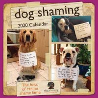 Dog Shaming 2020 Square Wall Calendar
