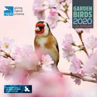 2020 RSPB British Garden Birds Wall Calendar