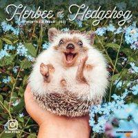 2022 Herbie Hedgehog Mini Wall Calendar