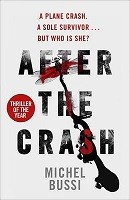 After the Crash (Paperback)