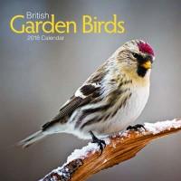 2018 Rspb British Garden Birds Wall Calendar