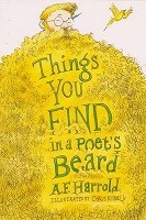 Things You Find in a Poet's Beard (Paperback)