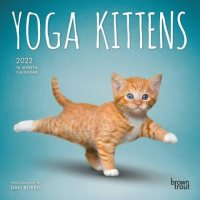 2022 Yoga Kittens Mini Wall Calendar