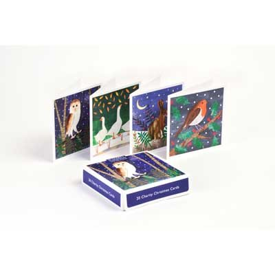 Collage Animals Charity Box X20: Christmas Cards