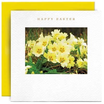 Primroses Happy Easter Card
