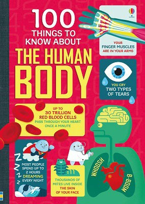 100 Things To Know About the Human Body - 100 Things to Know (Hardback)
